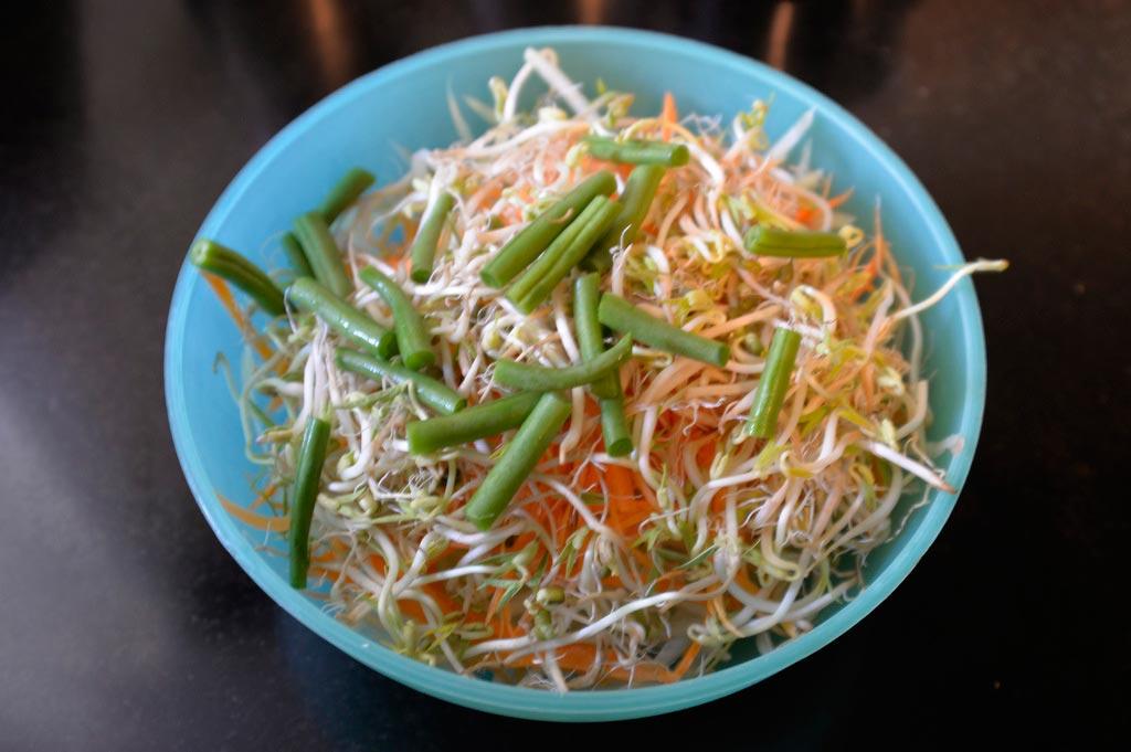 Салат-из-зелёной-папайи--(1)